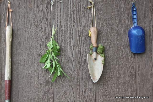 Drying homegrown herbs is an easy and satisfying way to preserve the harvest and enjoy garden fresh meals all year long.