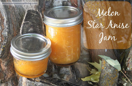 Melon Star Anise Jam - Homespun Seasonal Living