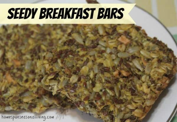 Seedy Breakfast Bars - full of healthy seeds, nuts, dried fruits and pumpkin. Tasty toasted with jam or plain.
