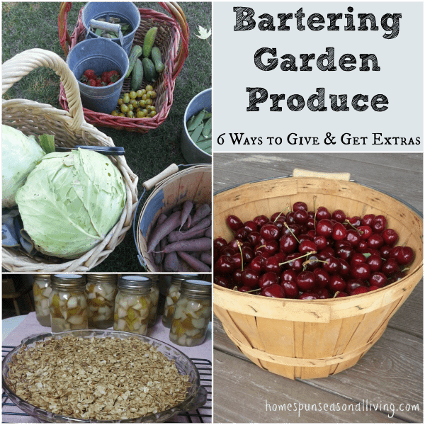 Bartering Garden Produce: 6 ways to give and get extras from the local community from Homespun Seasonal Living.