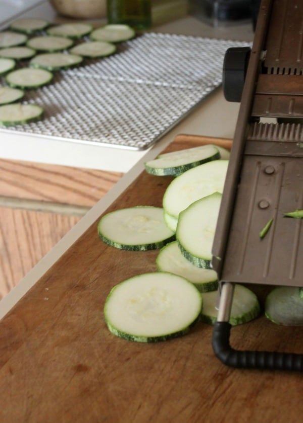 Preserving zucchini slices on a dehydrator tray.