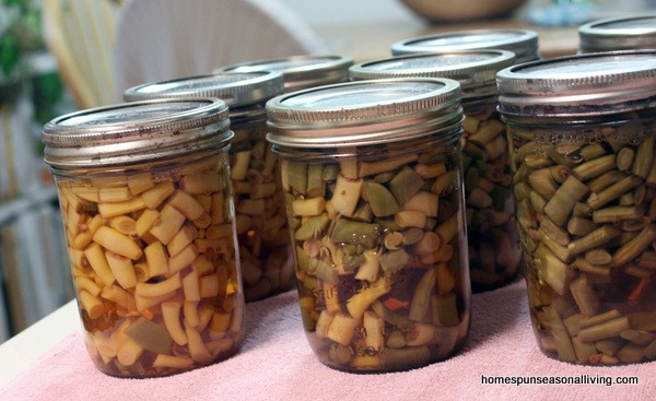 Canning Beans for the Time Crunched - Homespun Seasonal Living