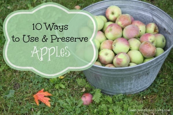 10 Ways to Use & Preserve Apples - Homespun Seasonal Living