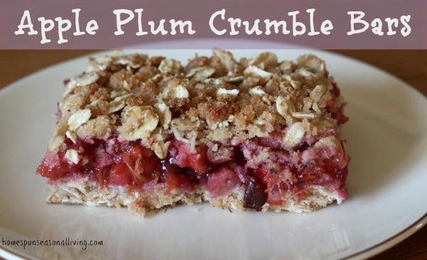 recipe: plum crumble bars recipe [8]