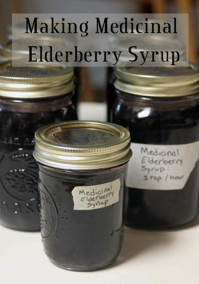 Fight colds and flu naturally by making medicinal elderberry syrup with my quick & easy method that can be canned or frozen for long-term storage.