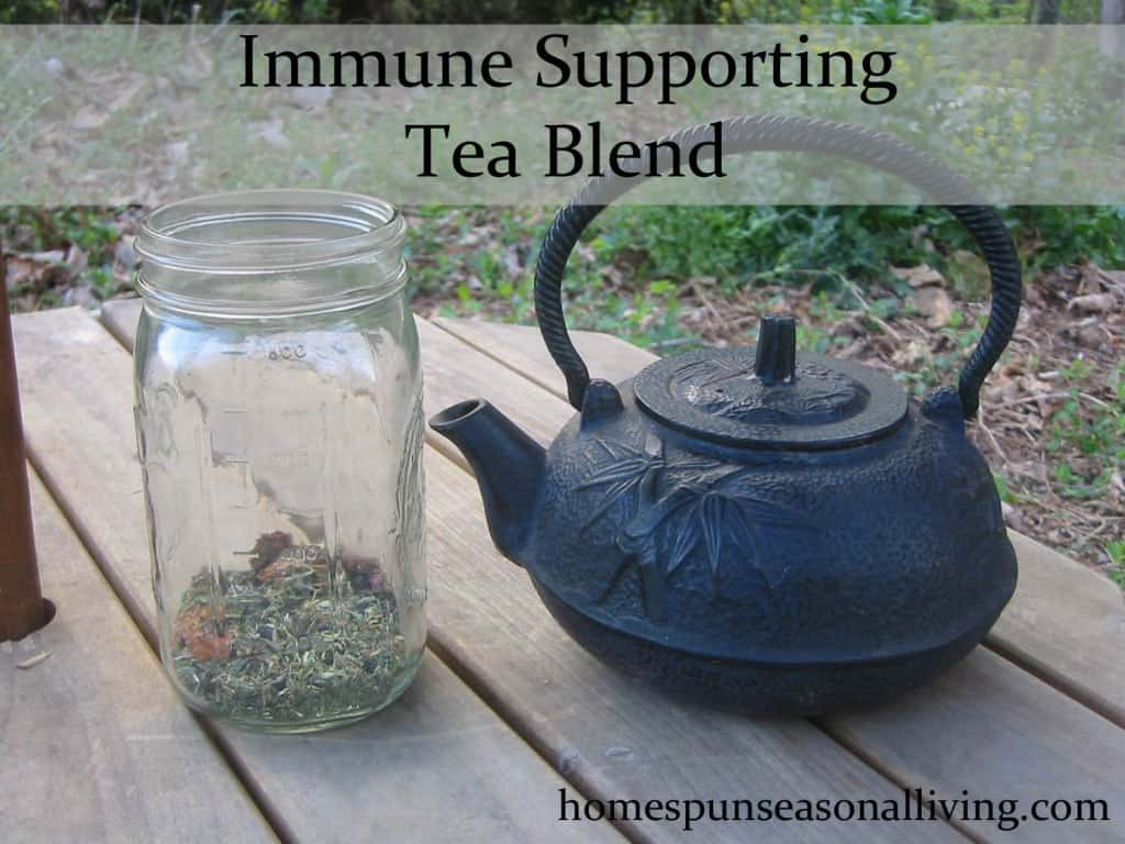 Immune Supporting Tea Blend | Homespun Seasonal Living