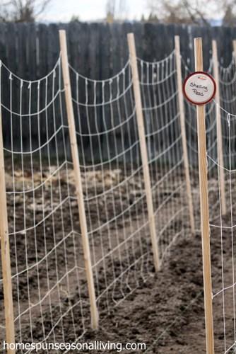Upcycled Canning Lid Plant Markers - Homespun Seasonal Living