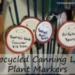 As you eat up your home canned goods, save the lids for marking plants.