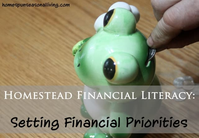 Setting Financial Priorities - Homespun Seasonal Living