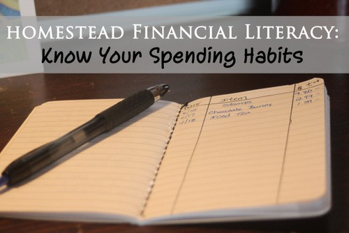 Homestead Financial Literacy: Know Your Spending Habits - Homespun Seasonal Living