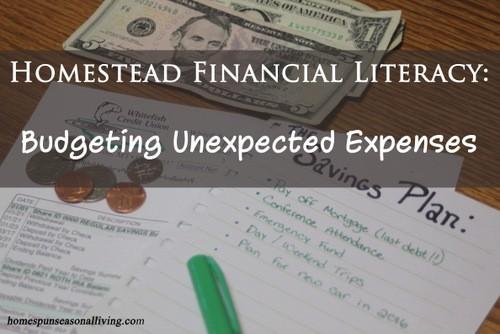 Budgeting Unexpected Expenses - Homespun Seasonal Living