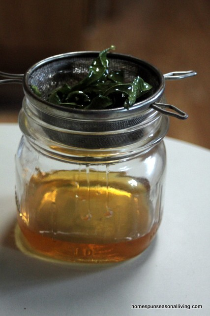 How to Make and Use Mint Infused Honey - Homespun Seasonal Living