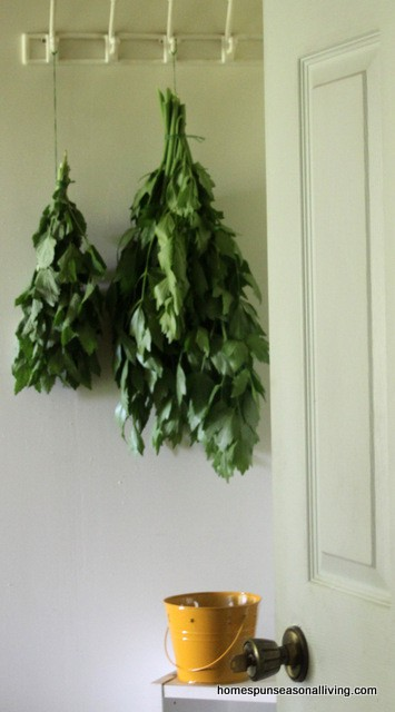 3 Ways to Use Lovage - Homespun Seasonal Living