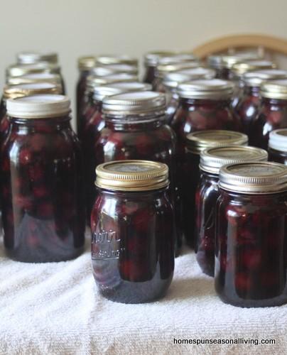 5 Ways to Preserve Sweet Cherries - Homespun Seasonal Living