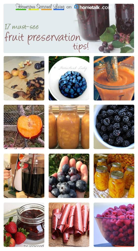 Fruit Preservation Projects