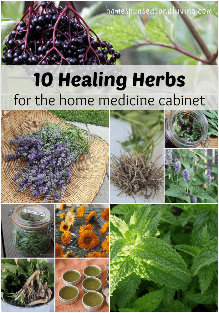 10 healing herbs for the home medicine cabinet.