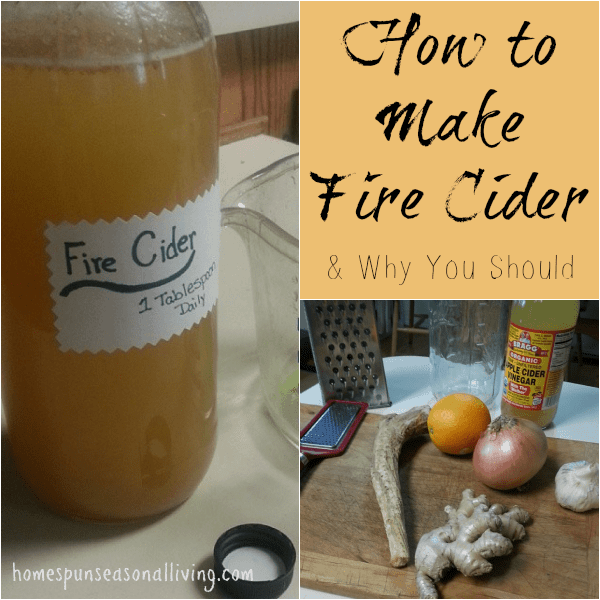How to Make Fire Cider (an herbal anti-inflammatory, immune boosting powerhouse) and why you should.