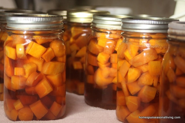 6 Ways to Preserve Carrots, even the itty bitty homegrown ones from Homespun Seasonal Living.