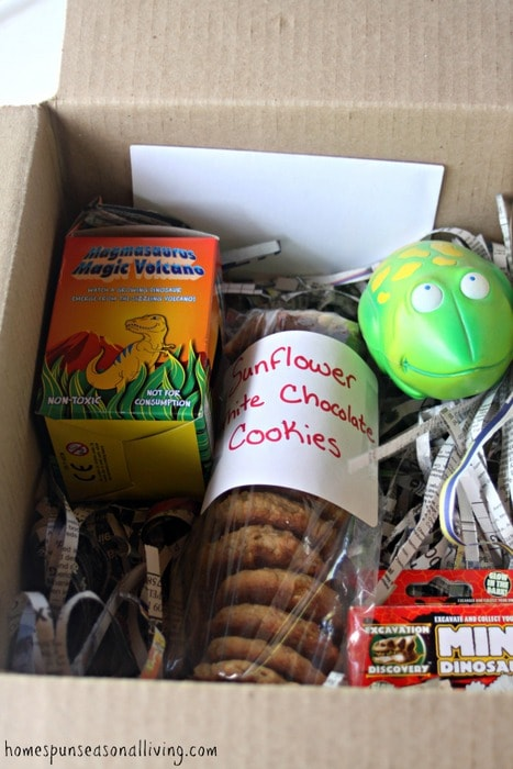 A care package full of cookies and toys.