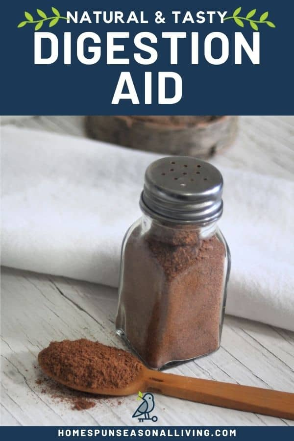 A wooden spoon full of ground flaxseed and spices sitting next to a salt shaker full of the same mixture with a candle and white linen napkin on a table with text overlay stating: natural & tasty digestion aid.