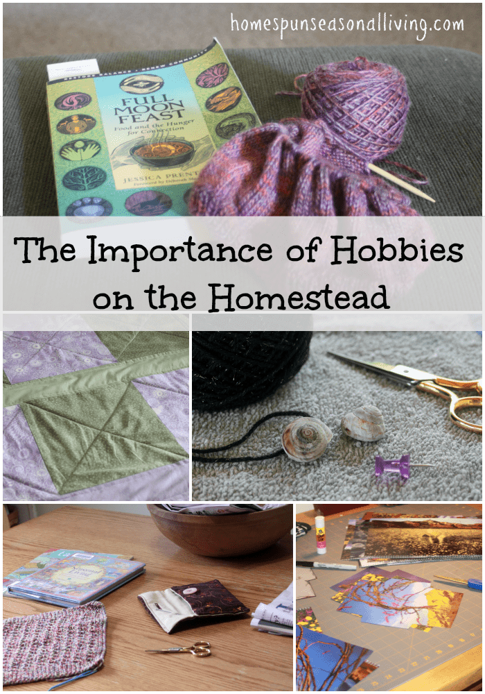 The importance of hobbies on the homestead should never be overlooked even in all that limited time, hobbies provide a multitude of benefits.