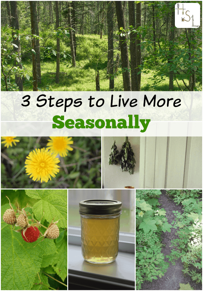 Live in harmony with the natural rhythms of the earth by incorporating small changes and establishing simple habits with these 3 steps to live more seasonally.