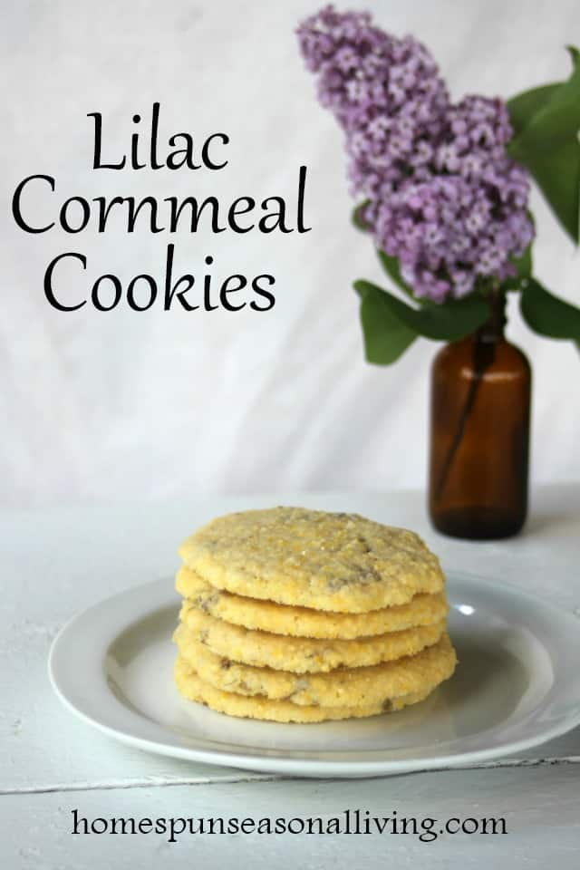 Lilac cornmeal cookies on a plate with a vase of lilac flowers.