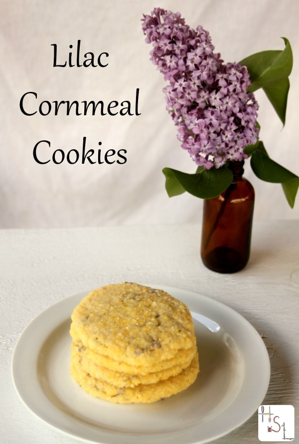Use up the beautiful blooms of early summer with these crunchy and tasty lilac cornmeal cookies.