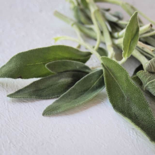 Fresh sage leaves on a white table.
