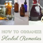 A photo of herbs in glass jars, sitting next to a photo of amber bottles on a white table, sitting next to a bottle full of elderberry syrup, stacked on top of text overlay reading how to organize herbal remedies.