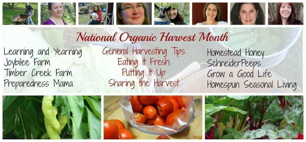 National Organic Harvest Month | Homespun Seasonal Living