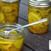 Zesty Bread & Butter Pickles
