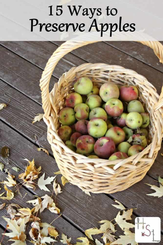 Be sure to save some of the fall season's flavor with one or more of these 15 ways to preserve apples.