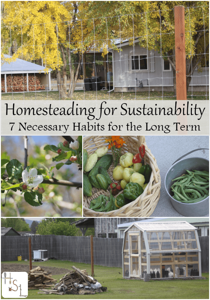 Homesteading for the long term is not necessarily about a large piece of land or a having an entire year's supply of food stored in the food pantry. It is more about having a small supply and the necessary skills and attitude to make it work, it's all about homesteading for sustainability.