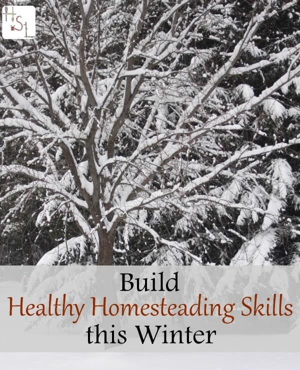 Use the winter season as a time to build healthy homesteading skills to make those long-term goals a reality.