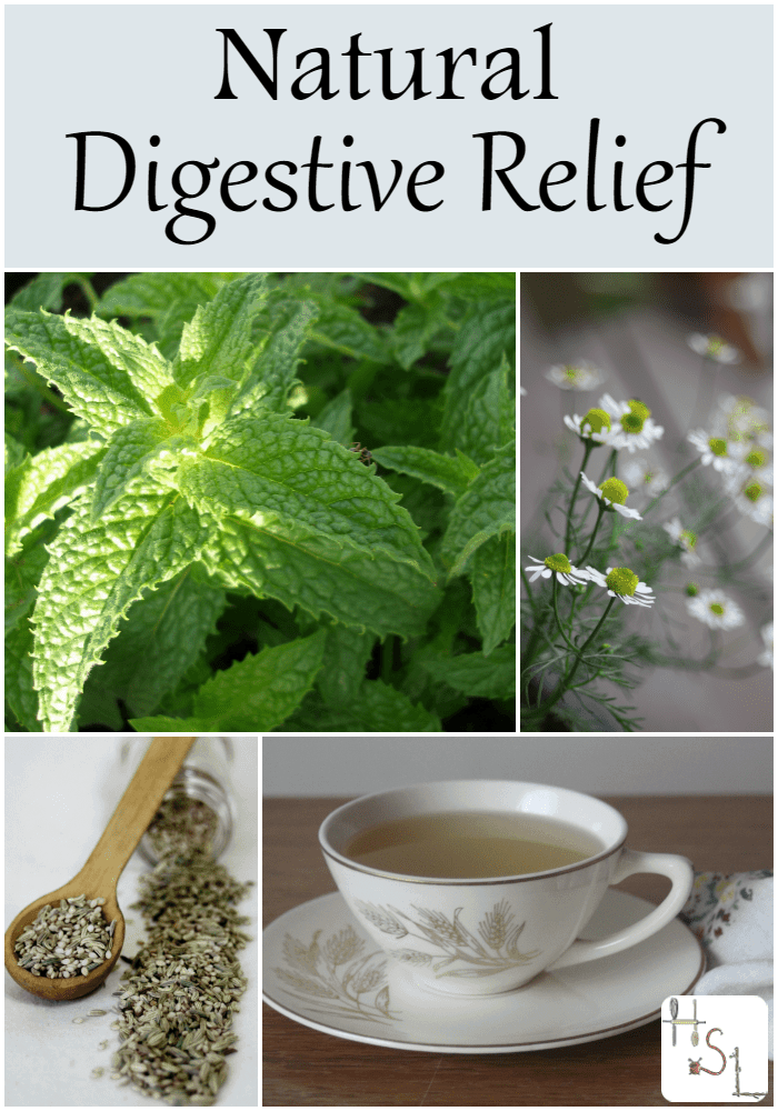 Find natural digestive relief with these herbs and spices for those times when tempted to over indulge and the stomach revolts.