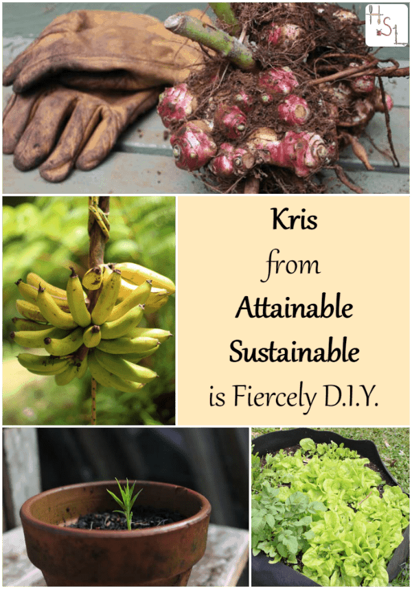 An interview with Kris from Attainable Sustainable about her Fiercely DIY habits.