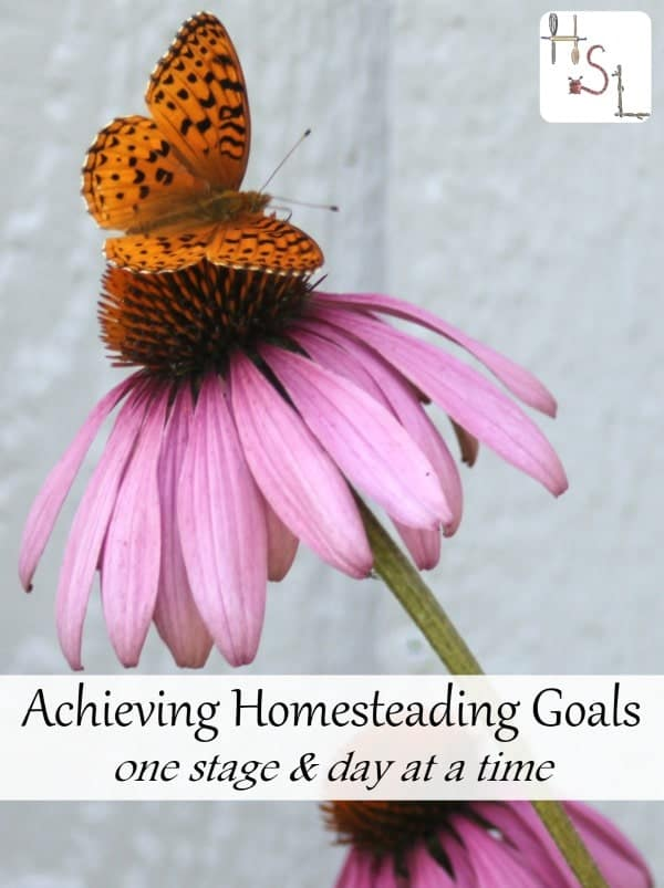 Make achieving homesteading goals easier by doing it stages and starting now.