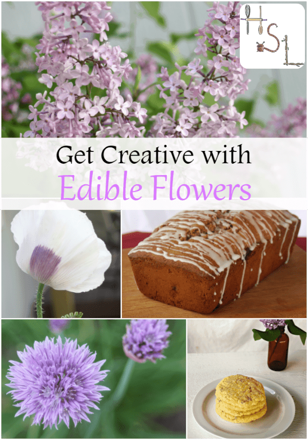 Get creative in the garden and the kitchen by adding edible flowers to the garden beds this year.