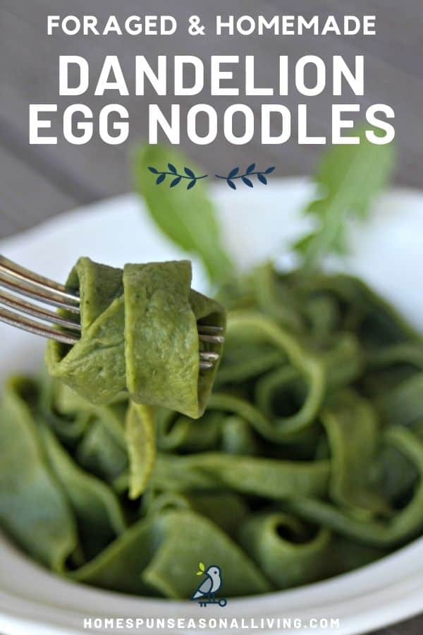 A green egg noodle wrapped around a fork with a bowl full of noodles in the background with text overlay stating foraged & homemade dandelion egg noodles.