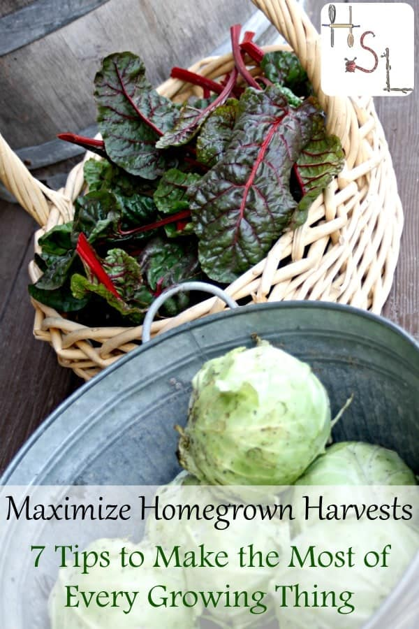Maximize homegrown harvests with these 7 tips to make the most of every growing thing to increase food security and live more frugally.