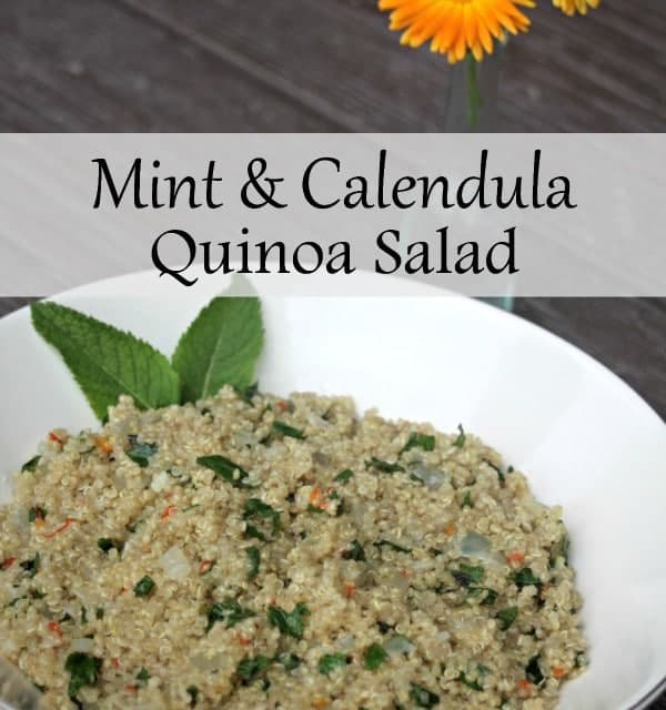 Use fresh herbs for a delightful salad full of flavor and perfect for quick meals and summer picnics with this Mint and Calendula Quinoa Salad.