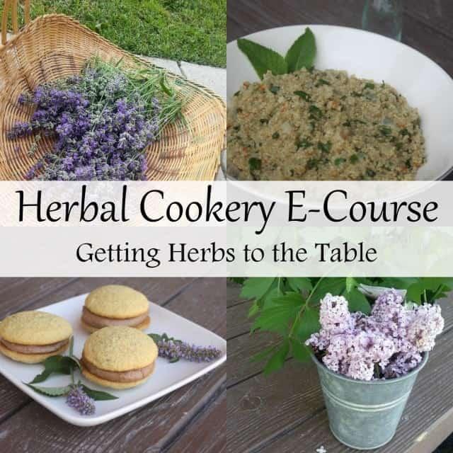 Herbal Cookery E-Course