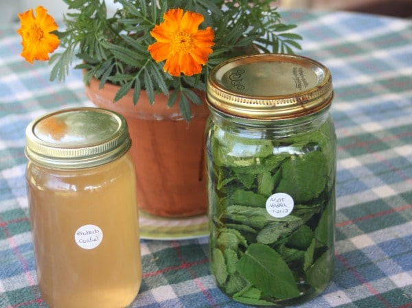 Make the most of summer abundance by creating homegrown gifts to save time, money, and stress later in the year with these easy ideas.