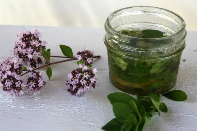 oregano infused honey on a table with oregano blossoms.