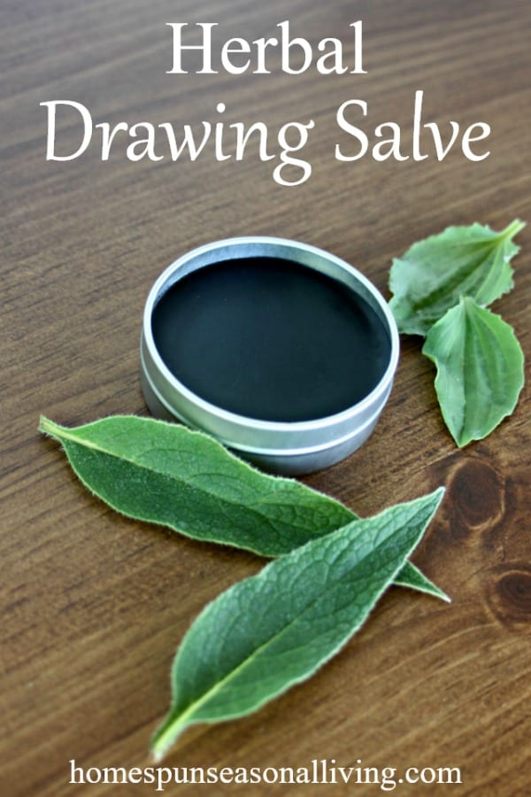 Herbal Drawing salve in a tin.