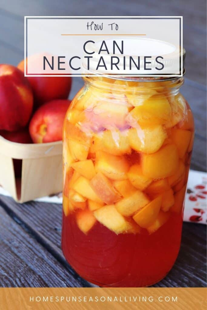 A jar of canned nectarines sitting in front of a cloth table runner with a basket of fresh nectarines sitting on it with text overlay reading: how to can nectarines.