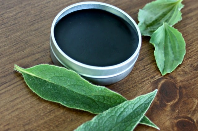 A metal tin full of black drawing salve surrounded by fresh herb leaves.