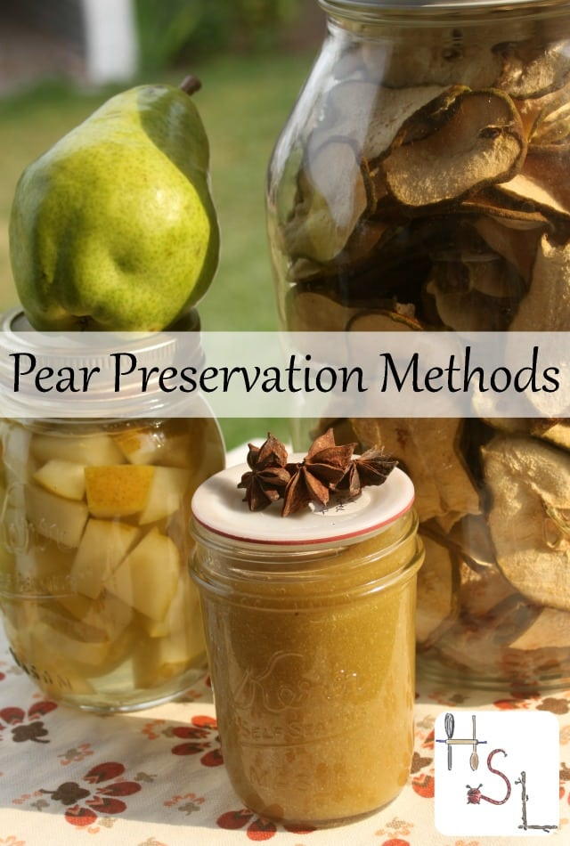 Save the gifts of the fall season for eating in winter and gift giving with these easy and tasty pear preservation methods.