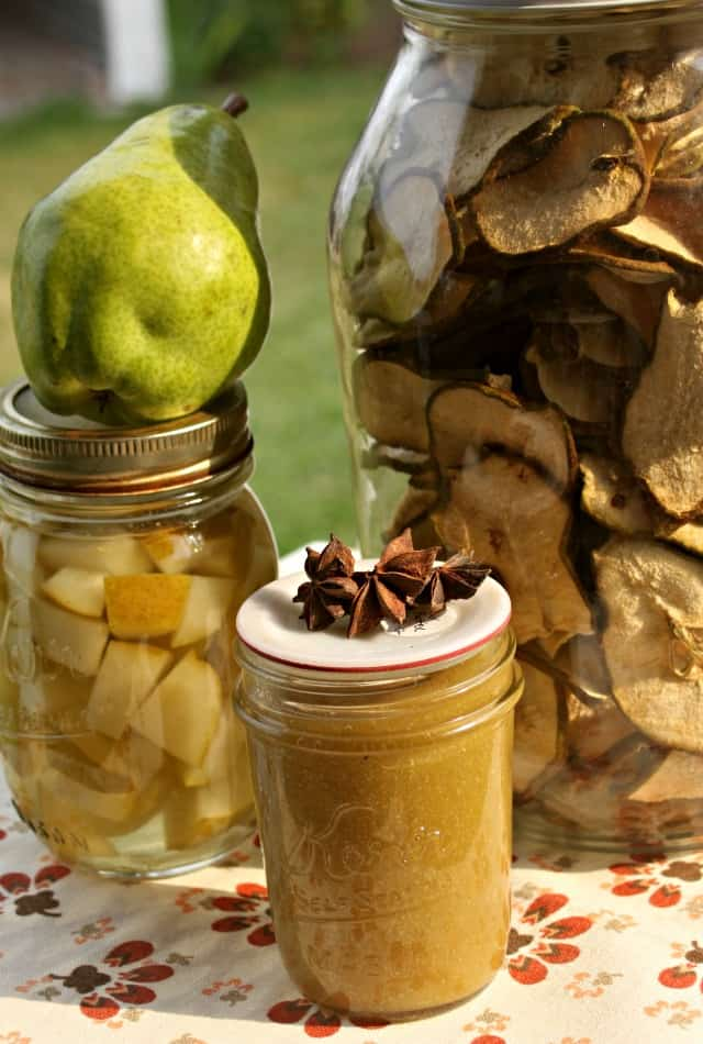 Dried pears in a jar, pear butter, and canned pears on a table.